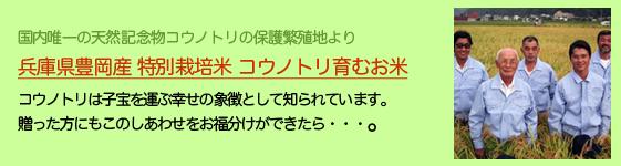 兵庫県豊岡産 特別栽培米 コウノトリ育むお米