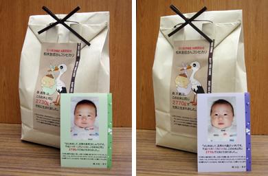 出産内祝い米 男の子サンプル 黄緑、薄むらさき色